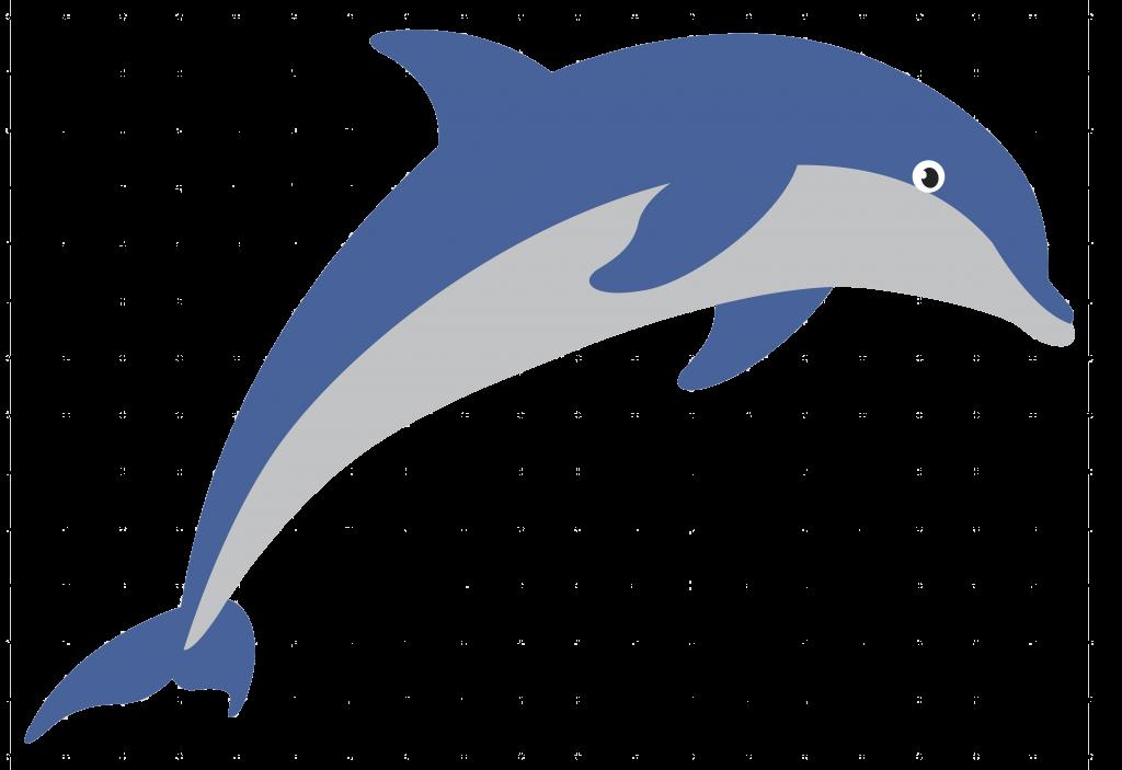 Dolphin plan logo